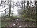 SE3201 : Bridge over Crane Moor Dike by John Slater