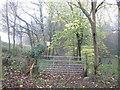 SE3200 : Track into the woods near Pilley Bridge by John Slater