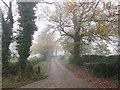SE3003 : Lane towards Lower Falthwaite by John Slater