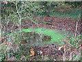 TM1999 : Small pond beside Long Lane by Evelyn Simak