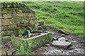 SK2568 : Spring and Water Trough by Mick Garratt