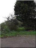 TM1478 : Bridleway to Warren Hills by Geographer
