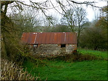 H5371 : Old farm building, Bracky by Kenneth  Allen