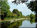 SJ8560 : Macclesfield Canal south of Astbury, Cheshire by Roger  Kidd