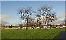 SJ4191 : Dovecot Park by Ian Greig