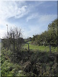 ST4718 : Strip of land beside the A303 at Cartgate by Rod Allday