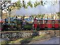 SX8274 : Bickington Steam Railway - Santa special by Chris Allen