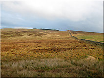 SD7148 : Easington Fell- boundary wall by Stephen Craven