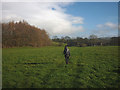 NY8112 : Bridleway approaching Field Head by Karl and Ali