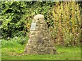 SK3628 : Jacobite Cairn by David Dixon