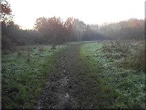 TQ1665 : Muddy path on Stokes Field by David Howard