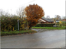 TM1582 : Hall Lane, Shimpling by Adrian Cable