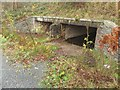 NY2523 : Culvert under the B5289 by Graham Robson