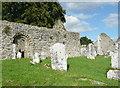 S3227 : Kilcash ruined church by Humphrey Bolton