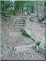 SE0025 : Steps on Hebden Royd FP48 by Humphrey Bolton