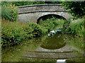 SJ8865 : Stanier 2nd Bridge north-east of Congleton, Cheshire by Roger  Kidd