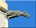 SK6470 : Gargoyle on the Church of St John - 1 by Trevor Rickard