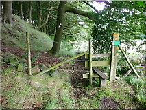 SE0026 : Stile on Hebden Royd FP17 in Burlees Wood by Humphrey Bolton