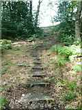 SE0026 : Steps on Hebden Royd FP20 in Stephenson House Wood by Humphrey Bolton