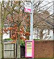 J3876 : Bus stop, Knocknagoney, Belfast (December 2014) by Albert Bridge