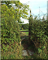 SP0575 : Stile for footpath to Brockhill Lane from Forhill Ash, Ryknild Street by Robin Stott