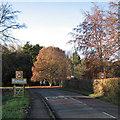 TL5461 : Bottisham: please drive carefully by John Sutton