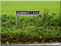 TM2189 : Anson's Lane sign by Adrian Cable