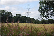 SE3057 : Pylon, Willow Wood by N Chadwick