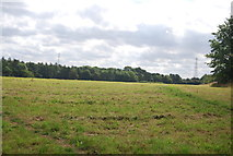 SE3058 : Field by the old Nidd Valley line by N Chadwick