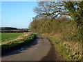 TF9025 : Country lane near East Raynham, Norfolk by Richard Humphrey