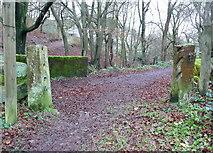 SD9927 : Gateposts at Hirst Bridge by Humphrey Bolton