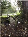 TM3485 : Footbridge on footpath to Church Farm by Adrian Cable