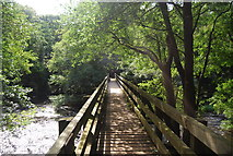SE3258 : Footbridge across the River Nidd by N Chadwick