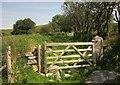 SX5384 : Gate near Doe Tor Farm by Derek Harper