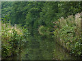 SJ9170 : Macclesfield Canal north of Oakgrove, Cheshire by Roger  Kidd