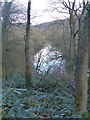 SJ9791 : River Etherow, Etherow Country Park by Dave Dunford