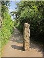 SX5185 : Granite Way at Lydford by Derek Harper