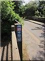 SX5185 : School Road, Lydford by Derek Harper