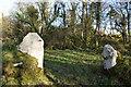 SM8621 : Stone Pillar Gateposts at Hen (Old) Southwood by Deborah Tilley
