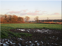 SE9746 : View towards the end of the lane to Lockington by Jonathan Thacker