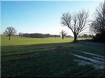 SK1533 : Sudbury Park by Jonathan Clitheroe