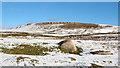 NY5713 : Embedded boulders in field by Trevor Littlewood