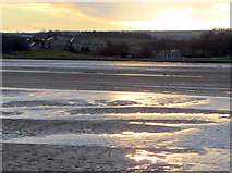 NU1535 : The Bight, Budle Bay by Andrew Curtis
