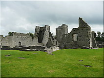 S4943 : The ruins of Kells Priory by Humphrey Bolton