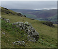 SO1261 : Grassy hill with small rocky outcrops by Andrew Hill