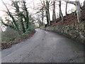 SE0618 : Looking up Dog Lane by Betty Longbottom