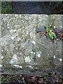 SJ5501 : OS rivet & cutmark, Bullhill Brook bridge by Richard Law