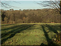 TQ2897 : Long Shadows, Trent Park, Cockfosters, Hertfordshire by Christine Matthews