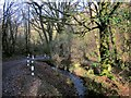 SX2967 : Stream and lane, Skelton's Wood by Derek Harper