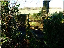 SU6514 : Rickety stile with sharp drop to road by Shazz